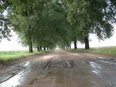road-1553006